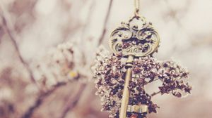 Preview wallpaper key, flowers, blur, souvenir