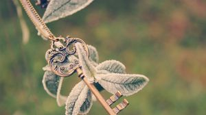 Preview wallpaper key, plant, branch, frost, leaves, string, cold