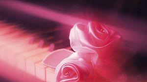 Preview wallpaper key, rose, soft, pink