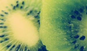 Preview wallpaper kiwi, fruit, slice, bone