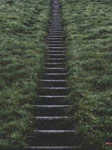 Preview wallpaper ladder, grass, rise, blur