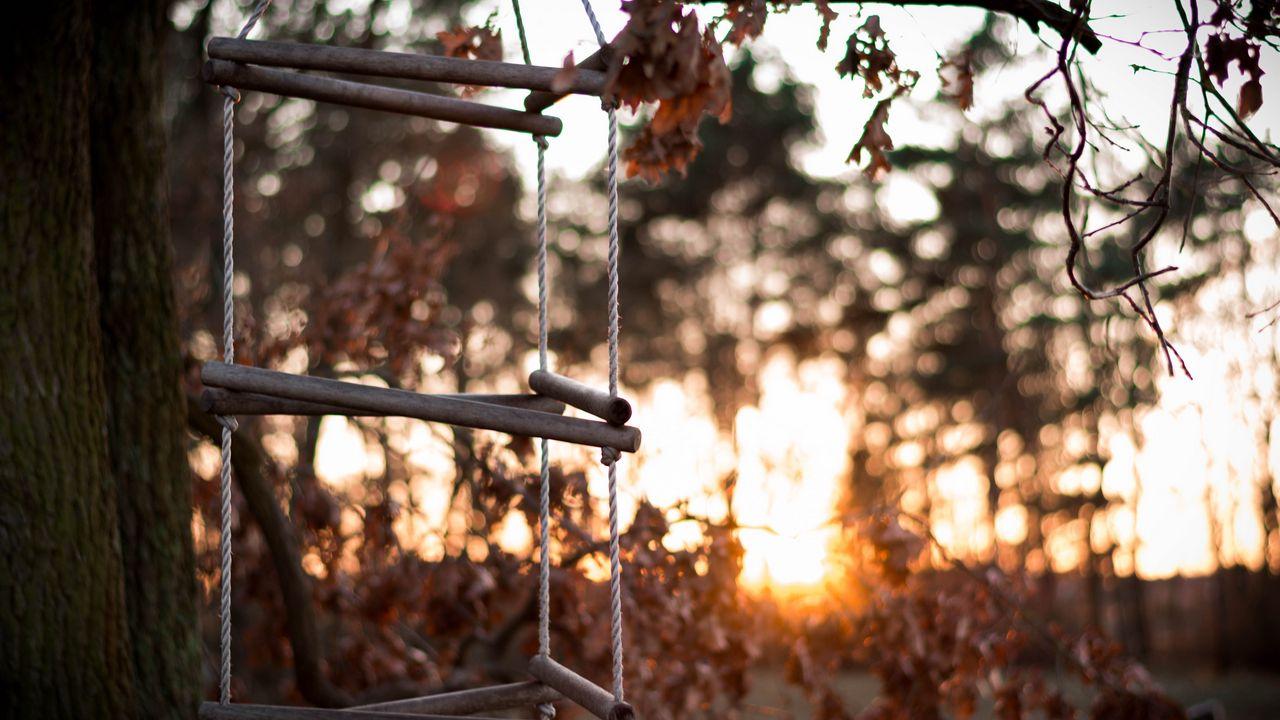1280x720 Wallpaper ladder, rope, tree, sunset, autumn
