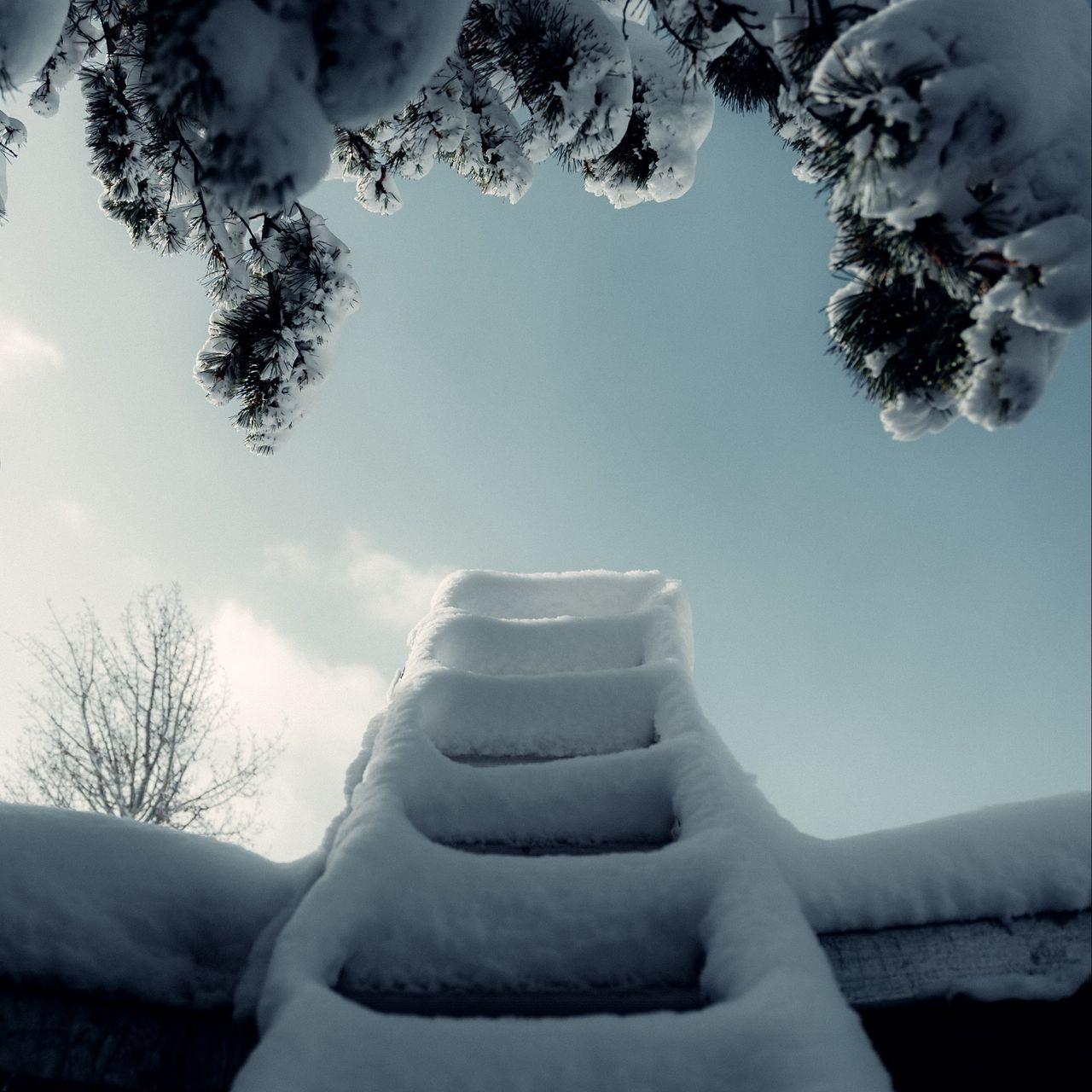 1280x1280 Wallpaper ladder, snow, branch, winter