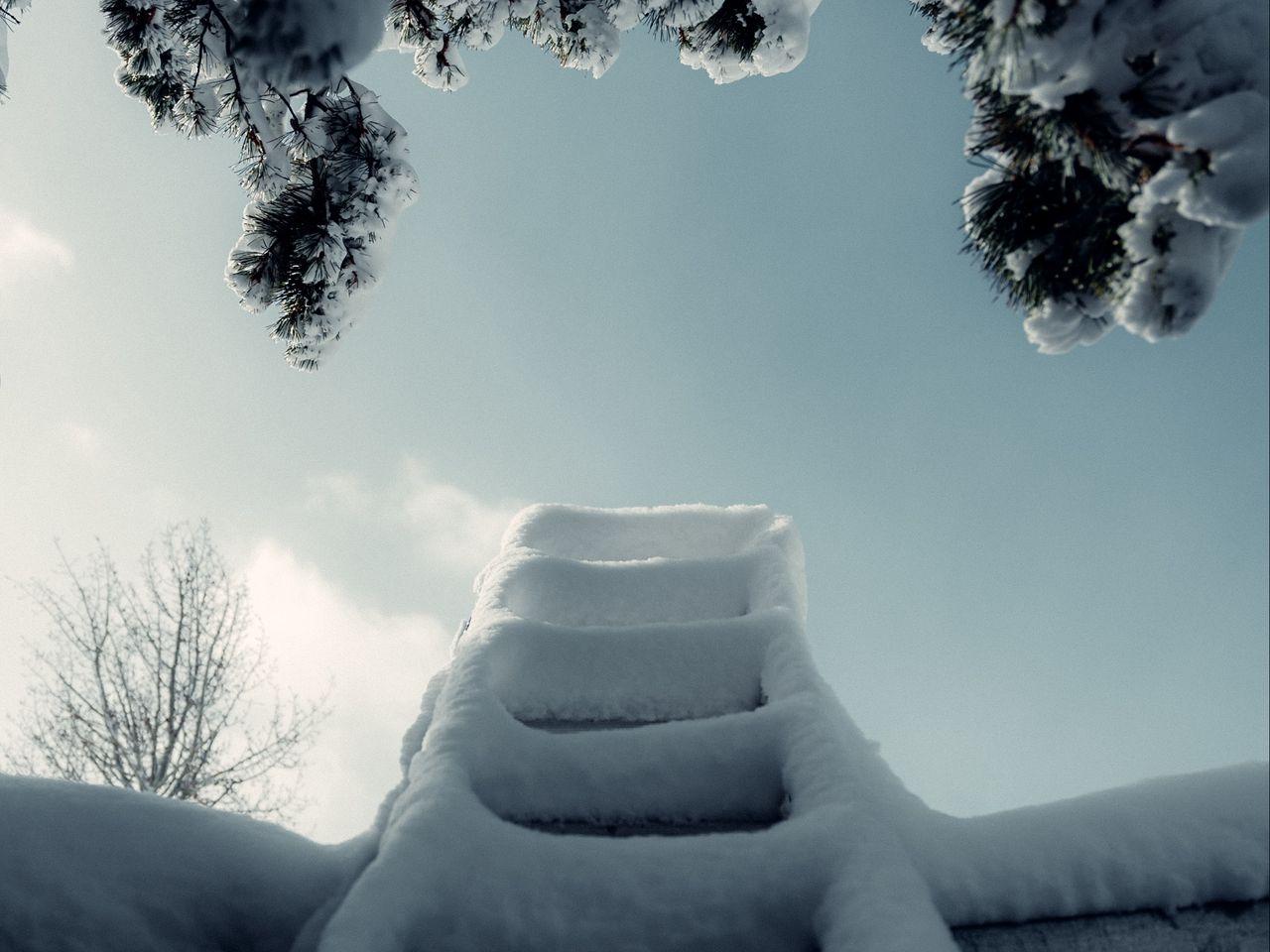 1280x960 Wallpaper ladder, snow, branch, winter