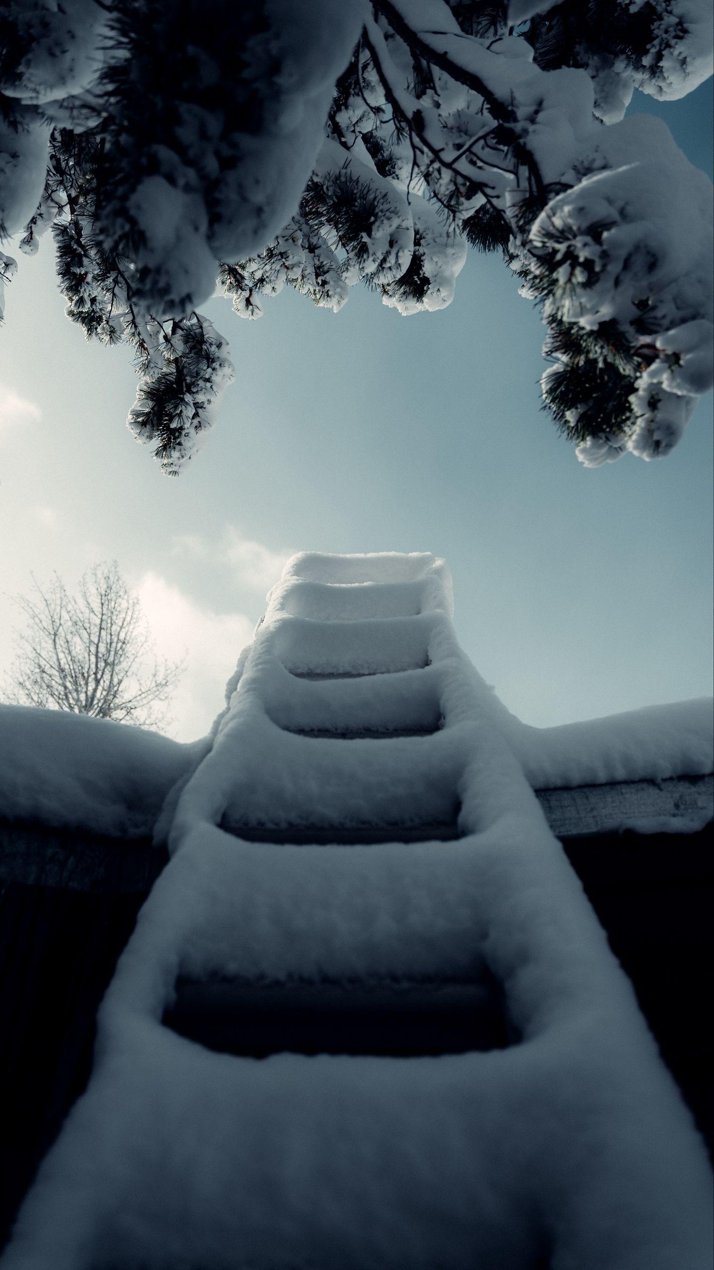 1440x2560 Wallpaper ladder, snow, branch, winter