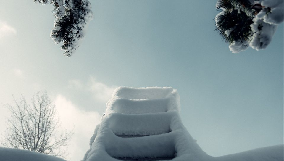 960x544 Wallpaper ladder, snow, branch, winter