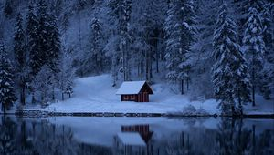 Preview wallpaper lake, forest, snow, winter, trees