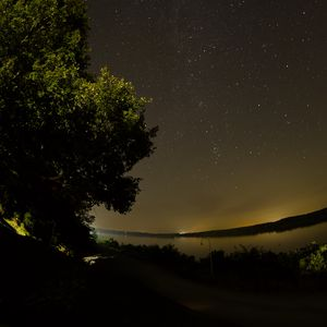 Preview wallpaper lake, tree, stars, night, dark