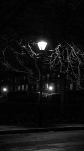 Preview wallpaper lantern, night, tree, bw