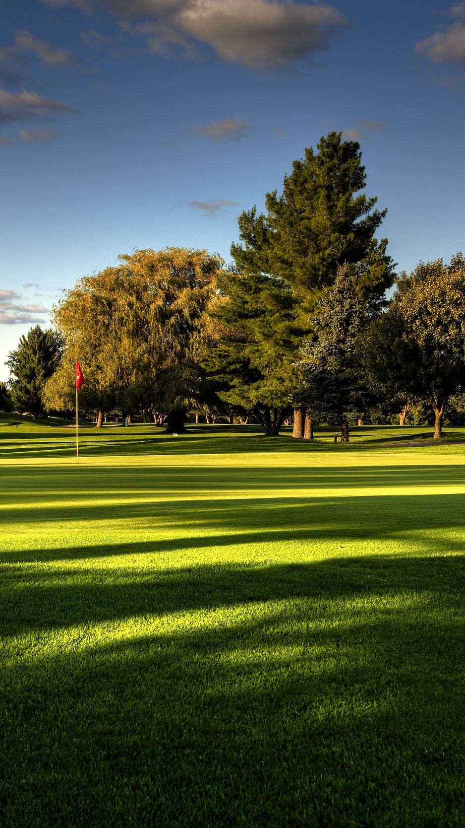 938x1668 Wallpaper lawn, field, golf, trees