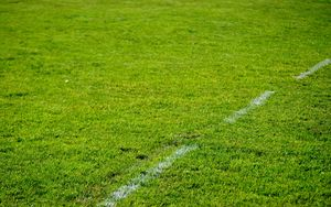 Preview wallpaper lawn, grass, marking, greenery