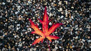 Preview wallpaper leaf, autumn, stones, fallen