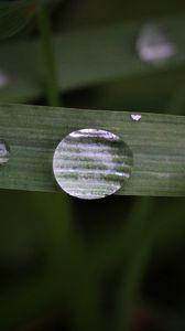 Preview wallpaper leaf, drop, macro, green