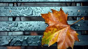 Preview wallpaper leaf, fall, drop