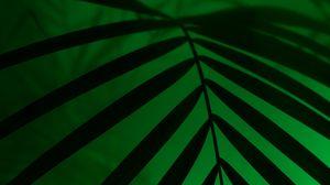 Preview wallpaper leaf, neon, palm, light, dark