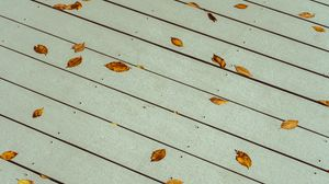 Preview wallpaper leaves, boards, wood, autumn