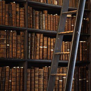 Preview wallpaper library, books, shelving, ladder