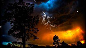 Preview wallpaper lightning, sky, trees, outlines, stars, bad weather, night, orange, birds
