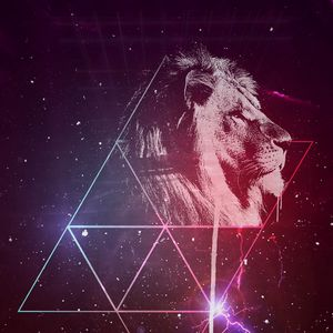Preview wallpaper lion, art, starry sky, triangles