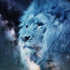 Preview wallpaper lion, muzzle, starry sky, stars, photoshop, king of beasts, predator