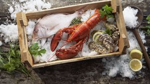 Preview wallpaper lobster, fish, mussels, ice, seafood, box