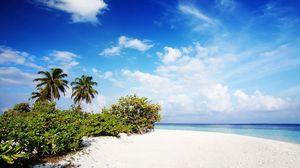 Preview wallpaper maldives, sand, beach, palm trees