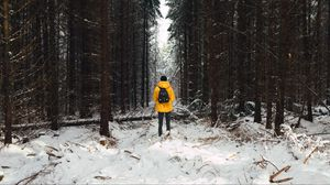 Preview wallpaper man, forest, snow, winter, trees
