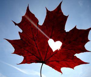 Preview wallpaper maple, leaf, heart, sky, blue