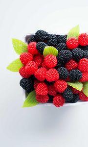 Preview wallpaper marmalade, blackberry, raspberry