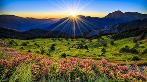 Preview wallpaper meadow, flowers, mountains, grass, dawn