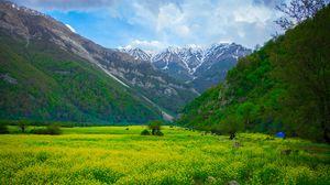 Preview wallpaper meadow, mountains, flowers, landscape
