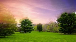 Preview wallpaper meadow, pines, green, glade, lilac, decline