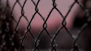 Preview wallpaper mesh, frost, macro