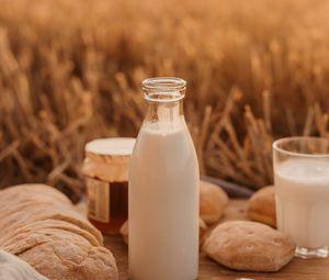 Preview wallpaper milk, bottle, field, picnic