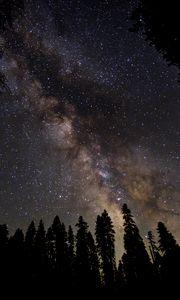 Preview wallpaper milky way, starry sky, stars, forest, night, dark