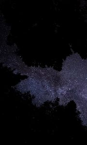 Preview wallpaper milky way, stars, starry sky, trees, night, dark