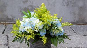Preview wallpaper mimosa, hydrangea, bouquet, bucket, asphalt