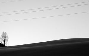 Preview wallpaper minimalism, bw, wires, tree