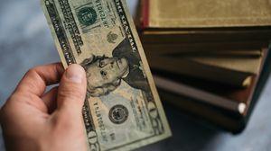 Preview wallpaper money, dollars, bill, hand
