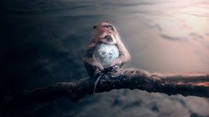 Preview wallpaper monkey, planet, photoshop, space