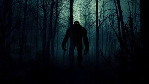 Preview wallpaper monster, silhouette, forest, night, art