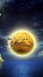 Preview wallpaper moon, birds, boats, water, castle, sky, stars