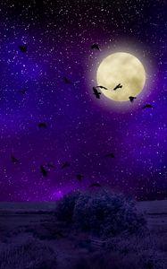 Preview wallpaper moon, moonlight, birds, starry sky, night, photoshop