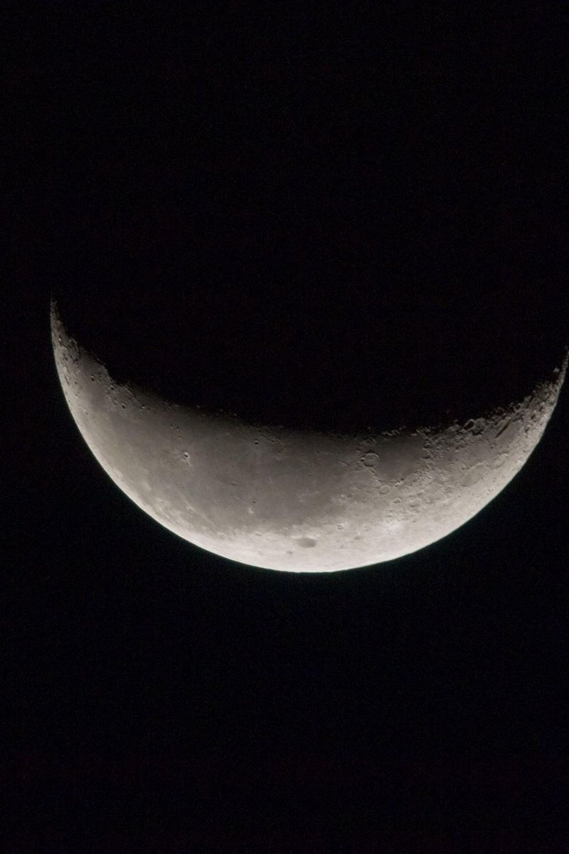 800x1200 Wallpaper moon, space, satellite, bw
