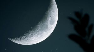 Preview wallpaper moon, starry sky, crater, branch