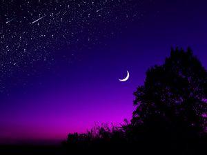 Preview wallpaper moon, tree, starry sky, night, stars, dark