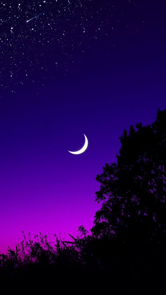 540x960 Wallpaper moon, tree, starry sky, night, stars, dark