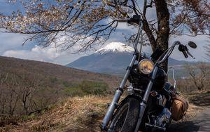Preview wallpaper motorcycle, bike, chopper, black, moto, sakura