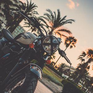 Preview wallpaper motorcycle, bike, palm tree