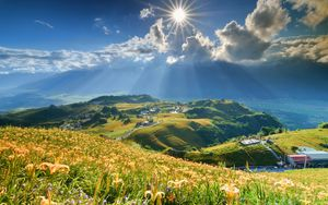 Preview wallpaper mountain, slope, flowers, lilies, sun, clouds, rays